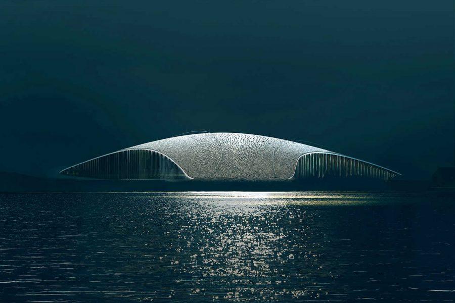 The Whale ArcticPavilion